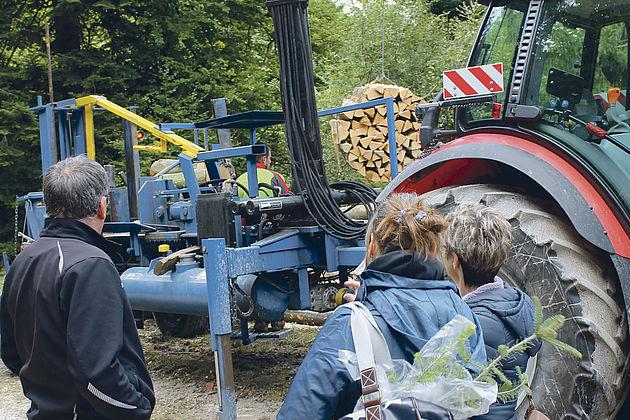 Schweizer Holz 06